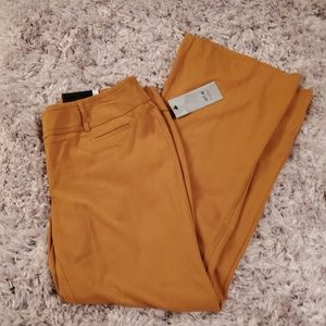 Apt. 9 Gold Trousers Pants, Size 14